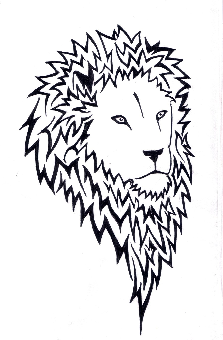 900x1371 Lion Facing Right By Wolfds