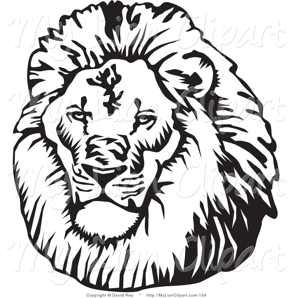 1024x1044 White Lion Clipart Lion Head