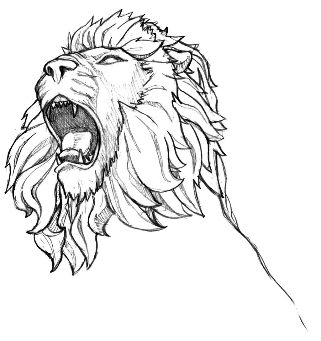 1024x1087 Drawn Lion Lion Line