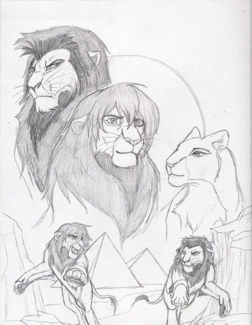 500x646 Lion King Drawing Uploaded By Sh@vonne On We Heart It