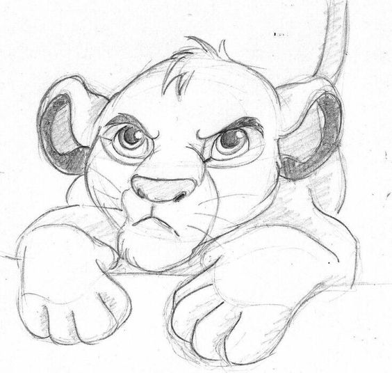 Lion King Pencil Drawing At Getdrawings Com Free For Personal Use
