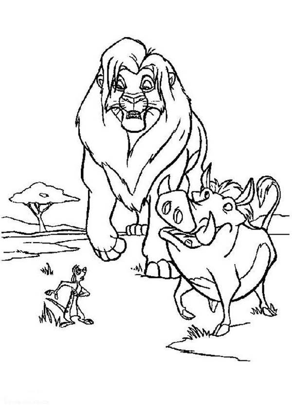 600x840 Timon Pumbaa With Lion King Simba Coloring Page Timon