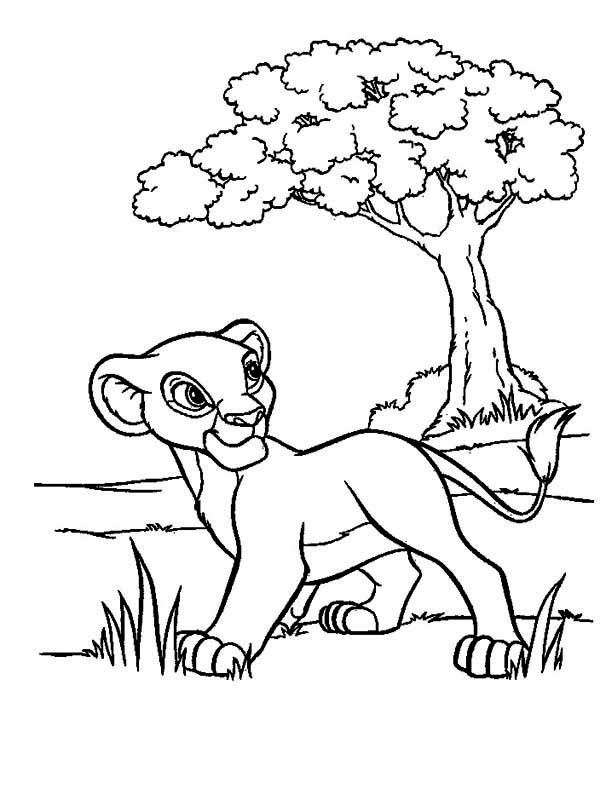 600x806 Simba Walking In The Meadow The Lion King Coloring Page Birthday