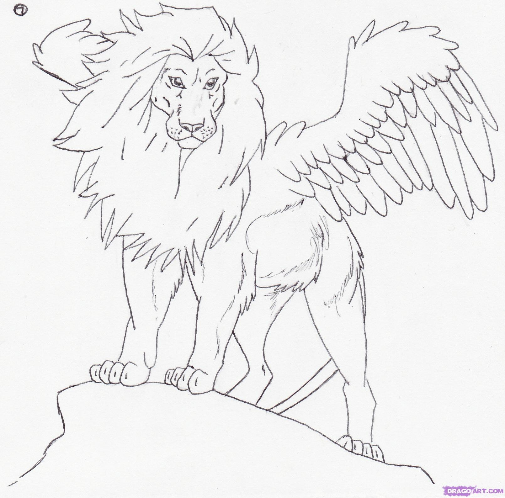 Lion Lying Down Drawing