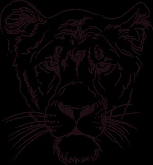 315x340 Lion
