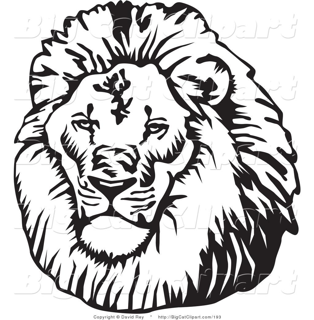 1024x1044 Big Cat Vector Clipart Of Blacknd White Male Lion Head