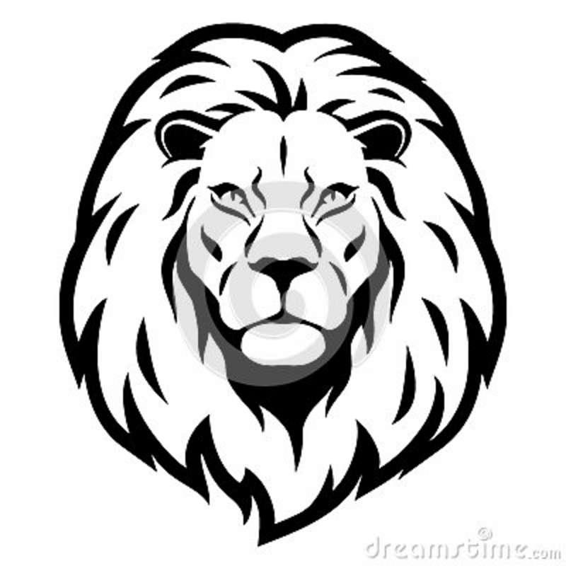 800x800 Dibujo Lions Lions, Tattoo And Tatoos