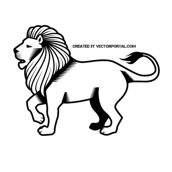 660x660 Male Lion Illustration