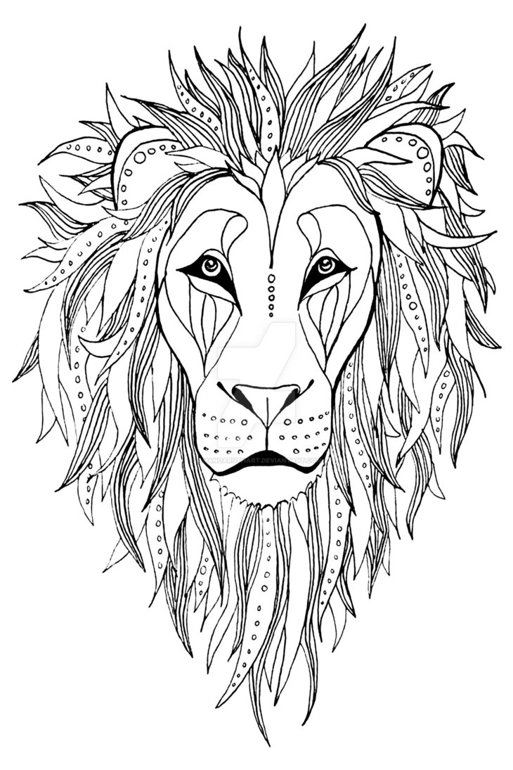730x1095 Patterned Lion Ink Drawing By Amandaruthart