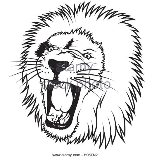 520x540 Roaring Lion Stock Vector Images