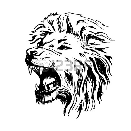450x450 Sketch Vector Lion Head. Open Mouth Grin Isolated On White