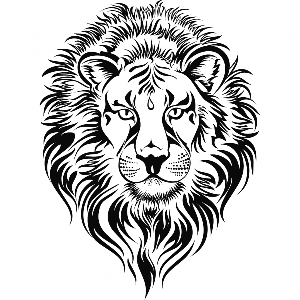 1024x1024 Lion Head Drawing