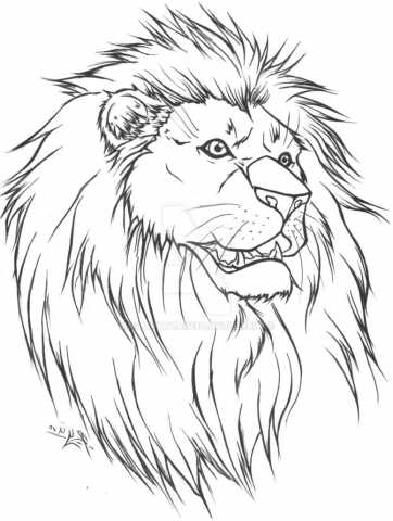 362x480 Looking Cool Lion Face Outline Drawing Simple Lion Face Drawing
