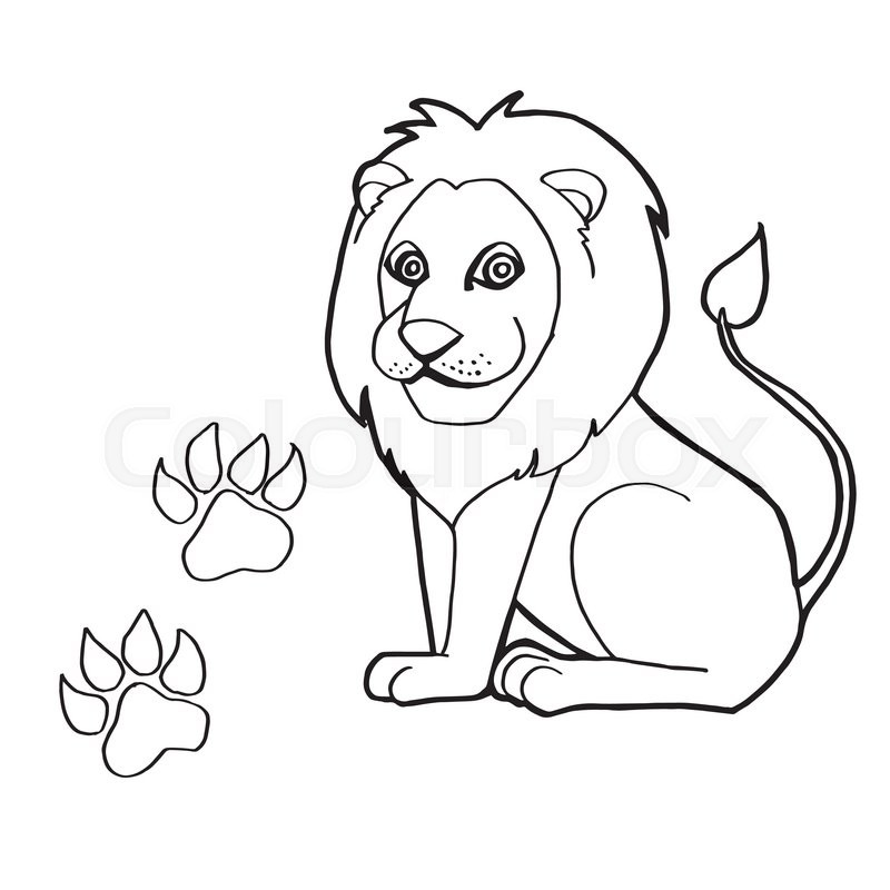 800x800 Image Of Paw Print With Lion Coloring Pages Vector Stock Vector