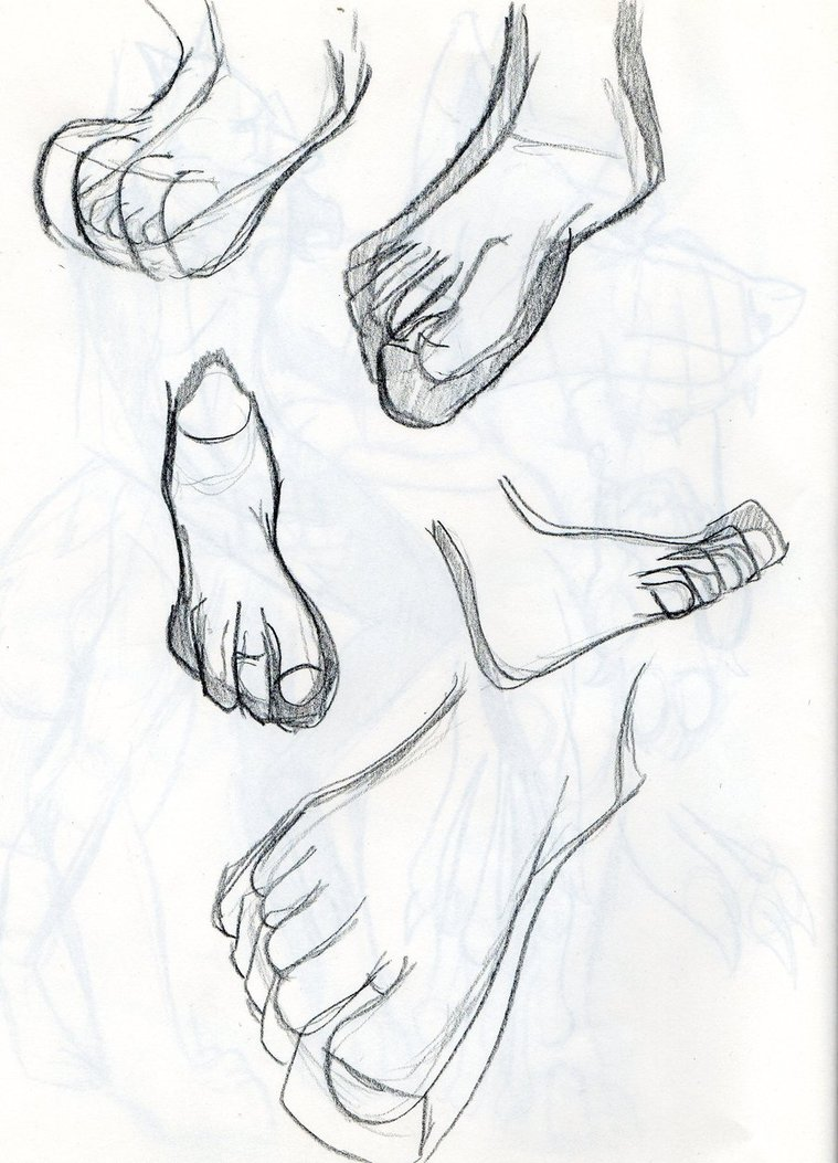 759x1053 Anthro Study Feet To Paws By Samoht Lion
