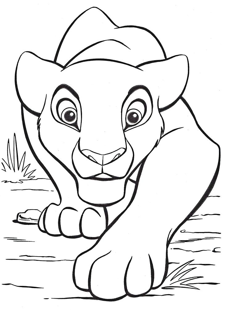 736x1003 Color Drawing Book Coloring Pages Lion King Free Large Images More
