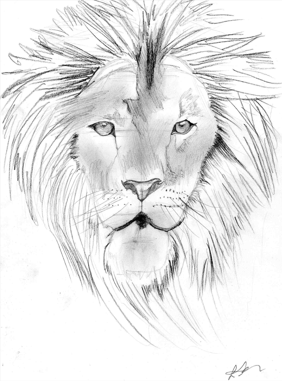 1900x2566 Sketch Lion Draws By Kodachi How To Draw Mufasa