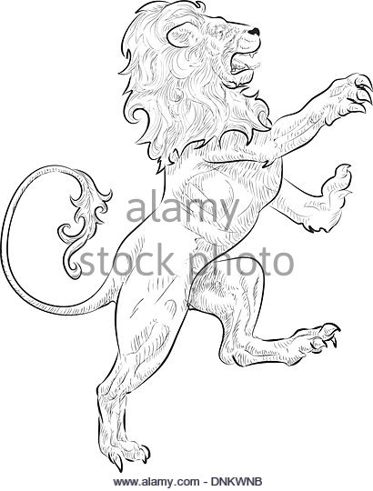 410x540 Lion Standing Hind Legs Stock Photos Amp Lion Standing Hind Legs
