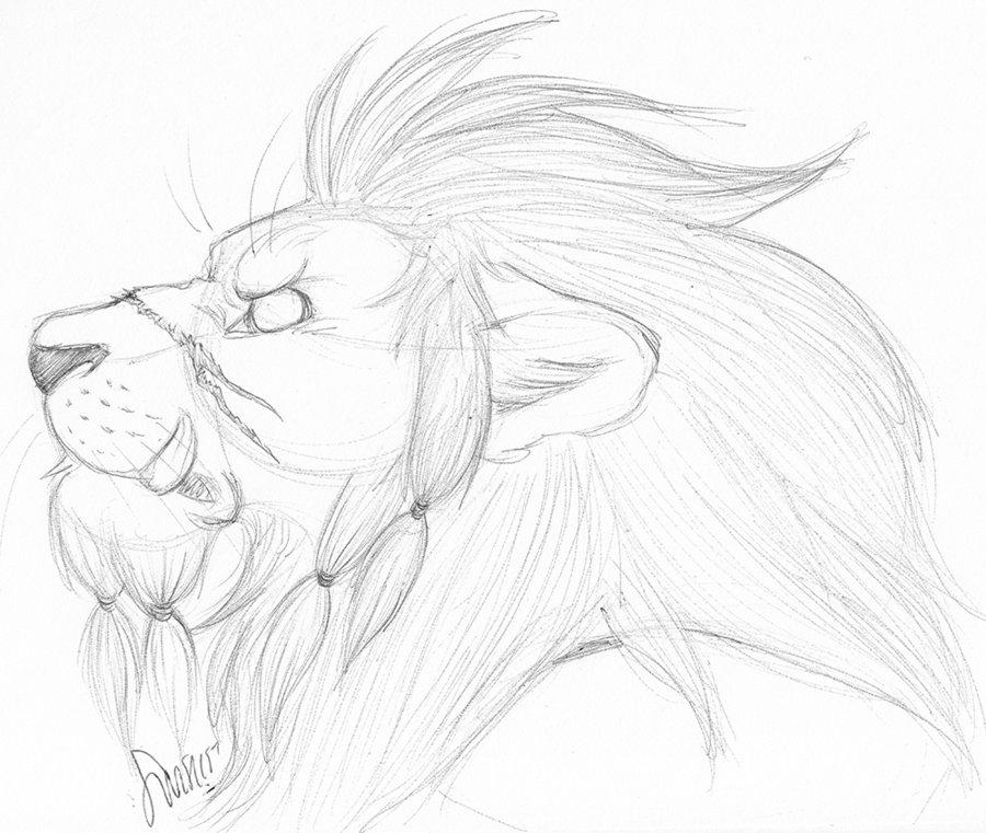 900x761 Lion Pride By Werewolfsense