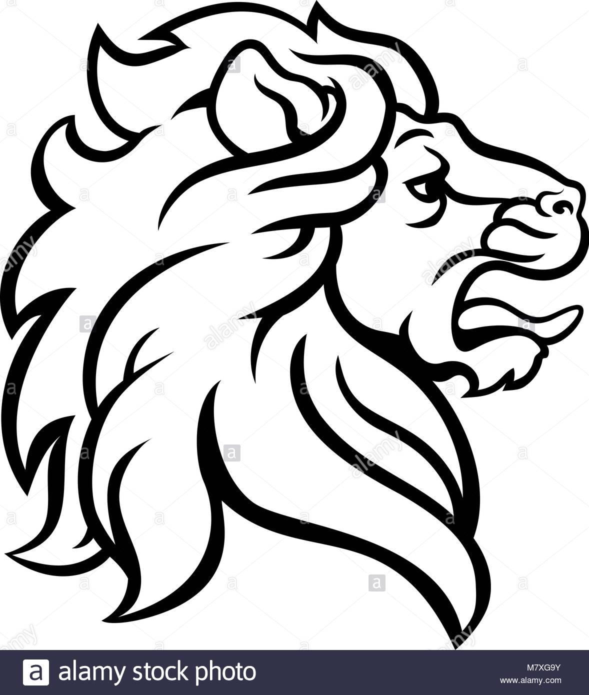 1178x1390 Lion Head Side Profile Stock Photos Amp Lion Head Side Profile Stock