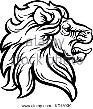 300x351 Sketch Of Lion Head With Mane. Lion Tattoo King. Vector
