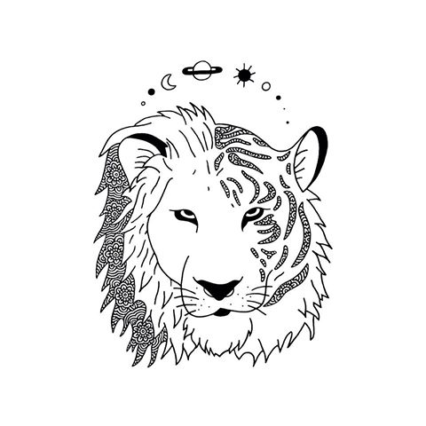 480x480 Drawn Tiger Half Lion Half