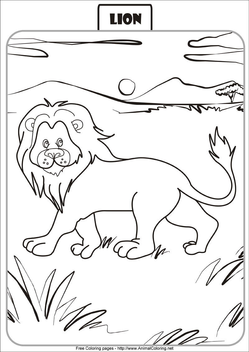 800x1131 Lion Coloring Pages