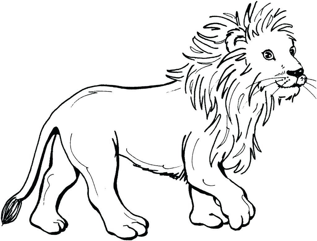 1024x777 Coloring Realistic Lion Coloring Pages