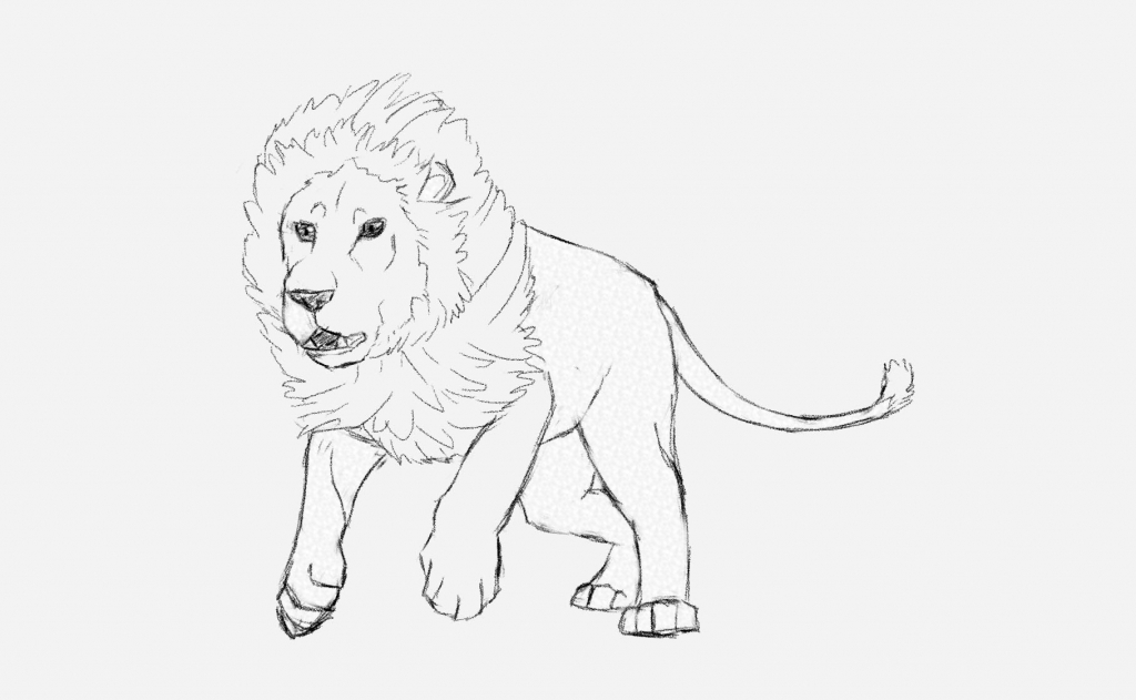 1024x631 Drawing Of A Lion How To Draw A Lion Roaring Roaring Lion Step