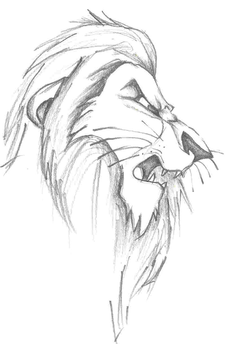 723x1104 Lion King Drawings Scar