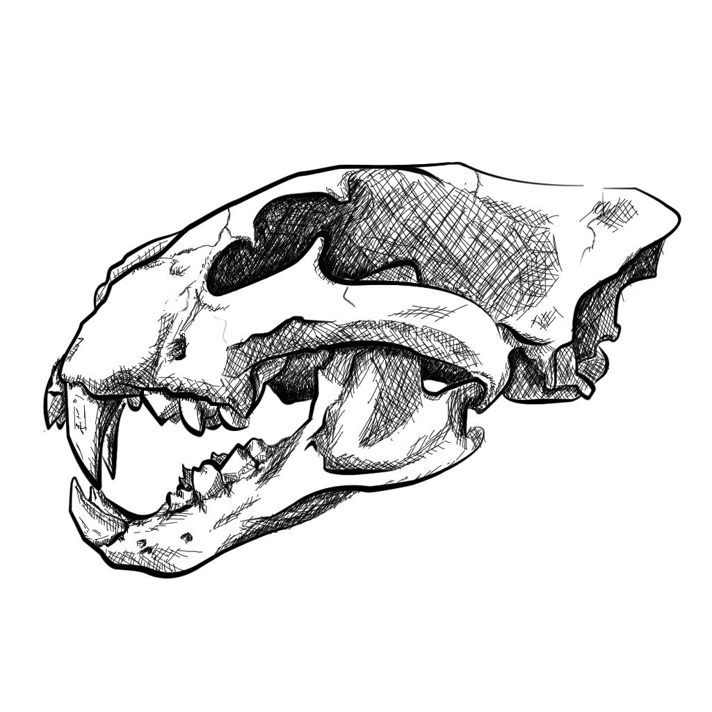 1024x1024 Lion Skull Project Wip By Yusufu