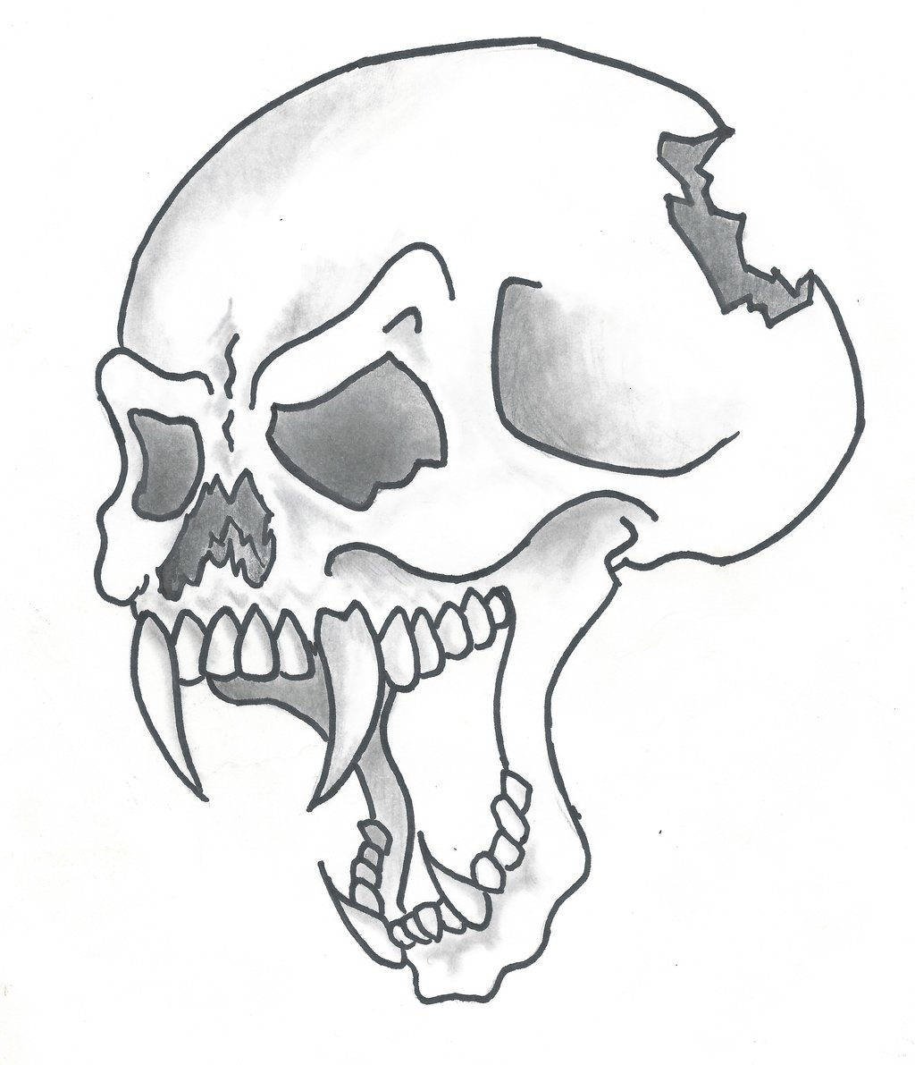 1024x1191 Pictures Of Drawings Of Skulls