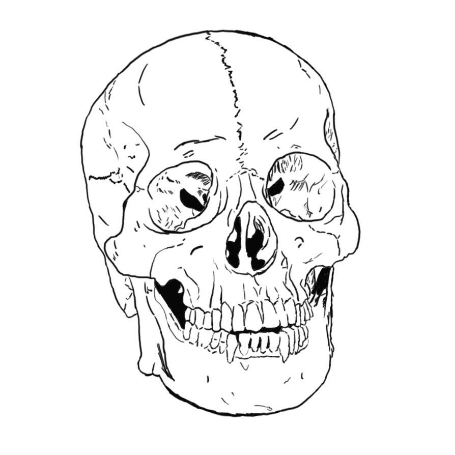 894x894 Skull Drawing For Kids