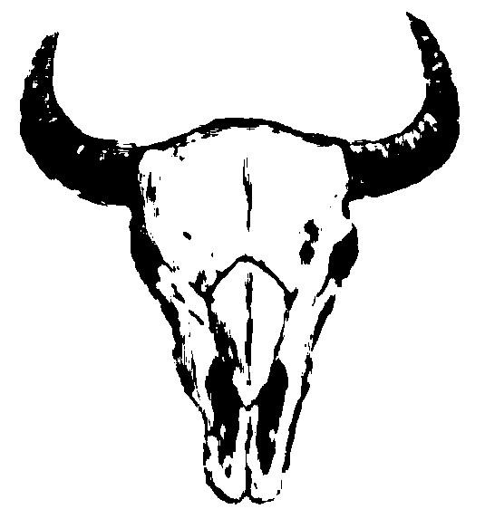 535x562 Buffalo Skull Outline Bison Stencil Bison Skull By Tattoo