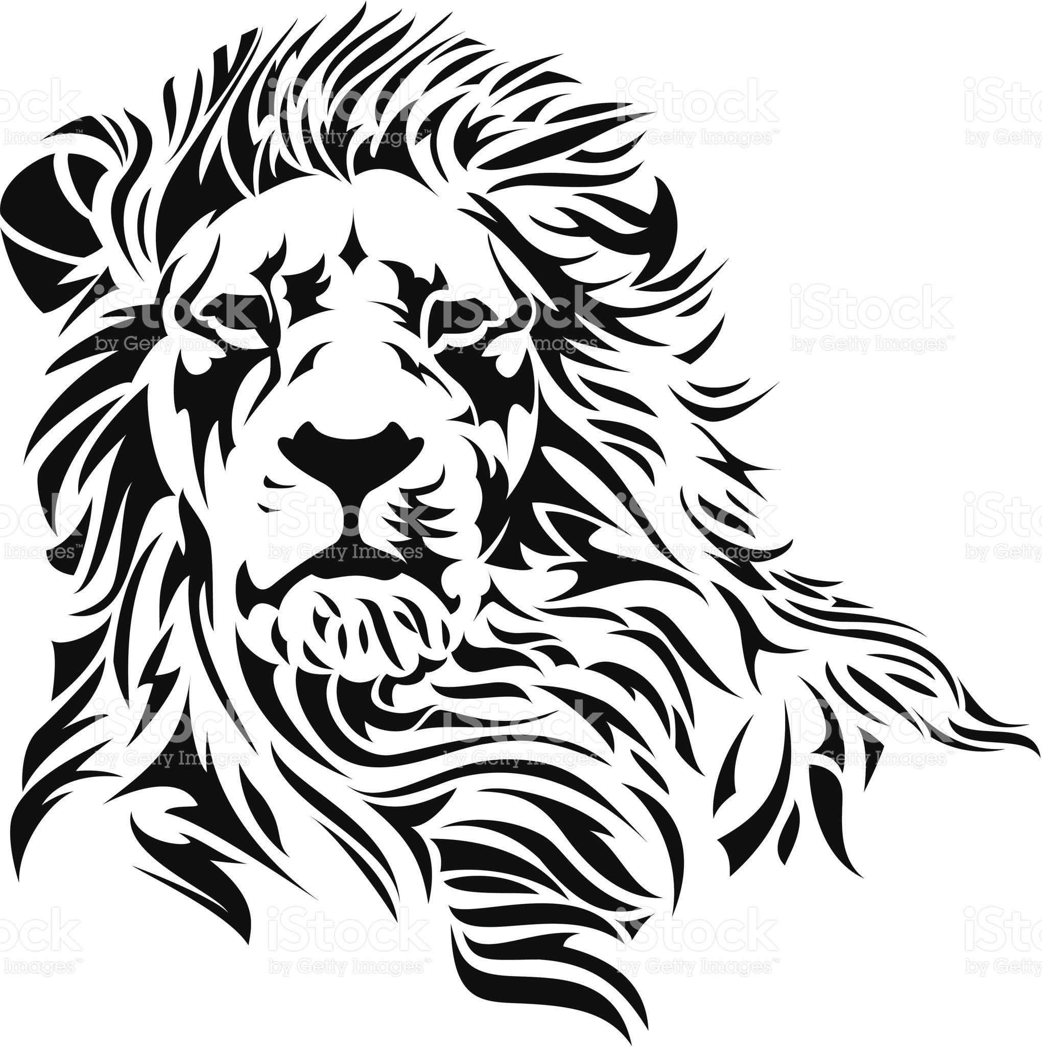 2040x2048 A Lion Head In Black And White. Lions