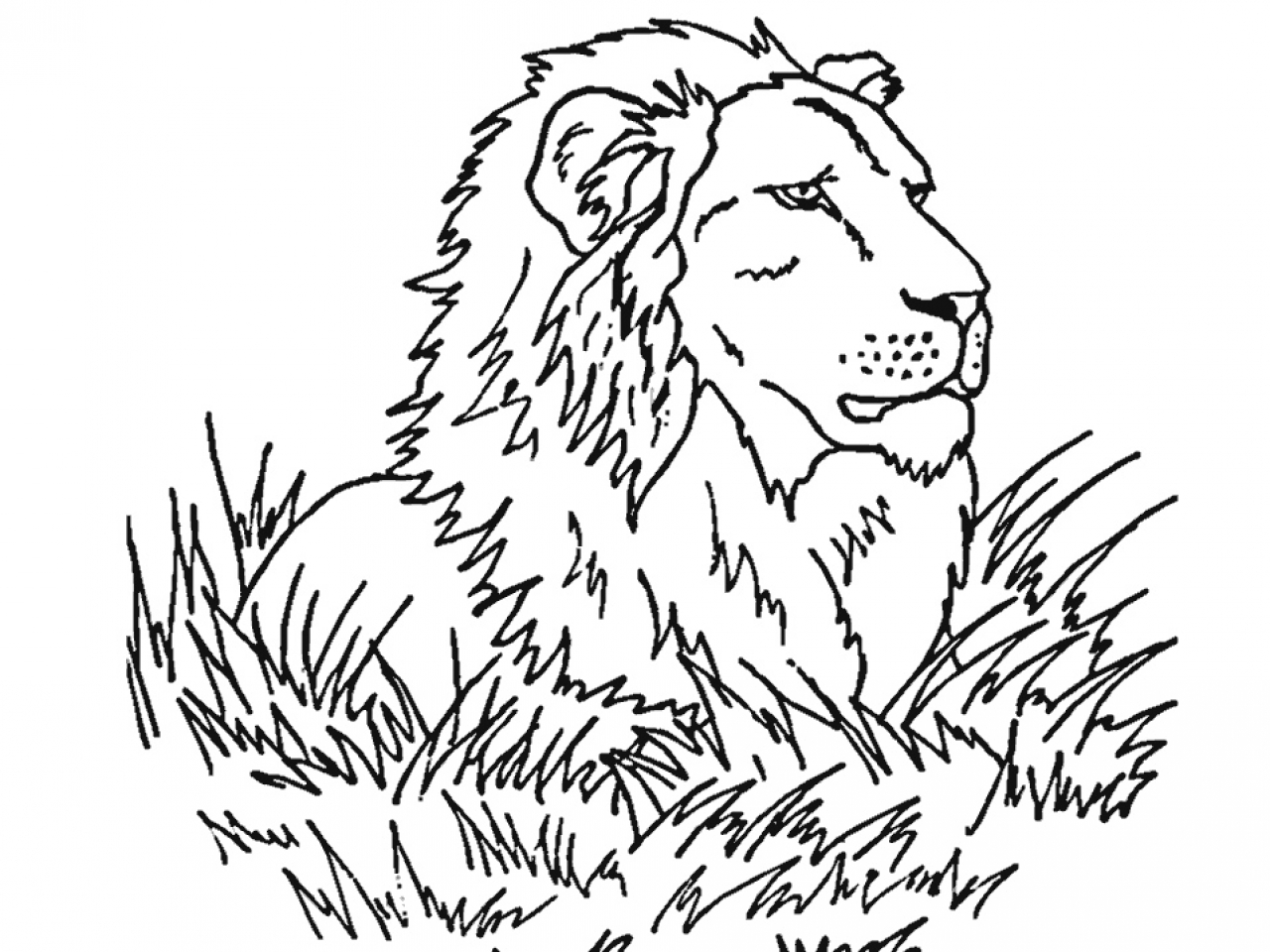 1280x960 Lion Coloring Pages For Preschoolers Kids