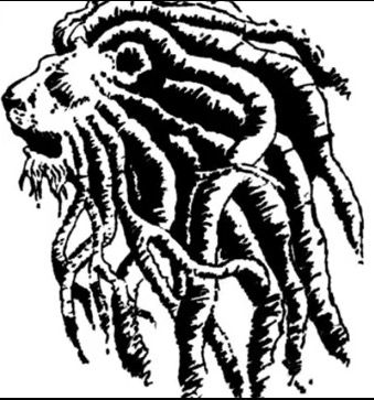 339x363 22 Best Lion Face Outline Tattoo With Dreads Images