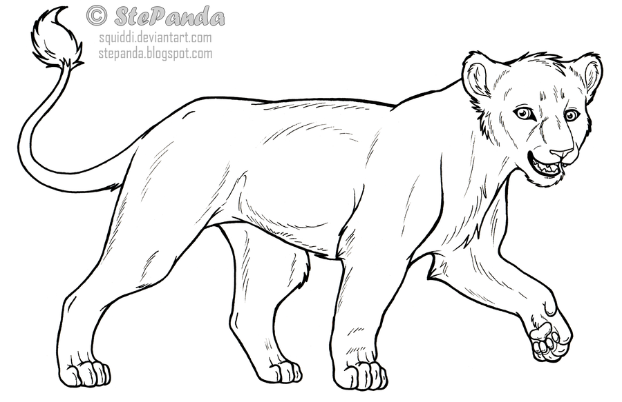 900x583 Free Lineart Adult Lioness By Stepandy