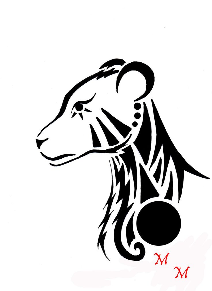 736x1009 27 Best Lion And Lioness Tattoo Outline Images