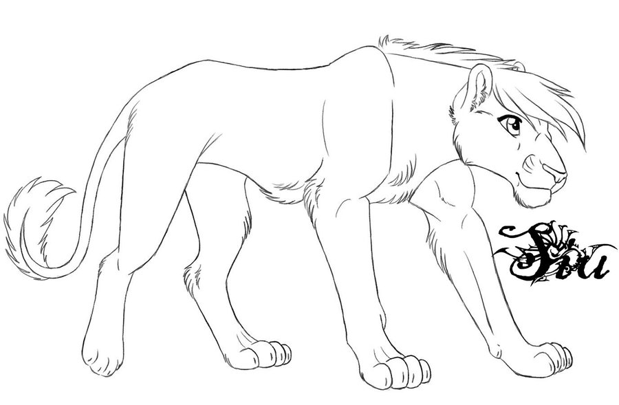 900x589 Lioness Outline By Thesiubhan
