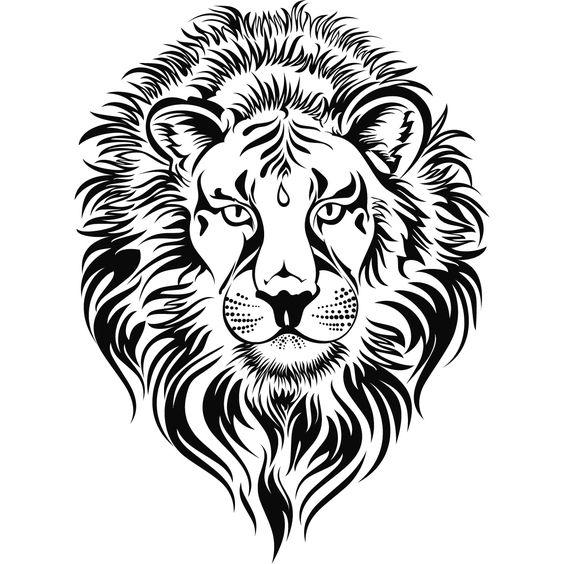 564x564 Lioness Head Cliparts