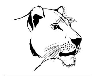 340x270 Lioness Svg Etsy