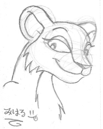 360x452 Sketchy Lioness By Miharuwatanabe