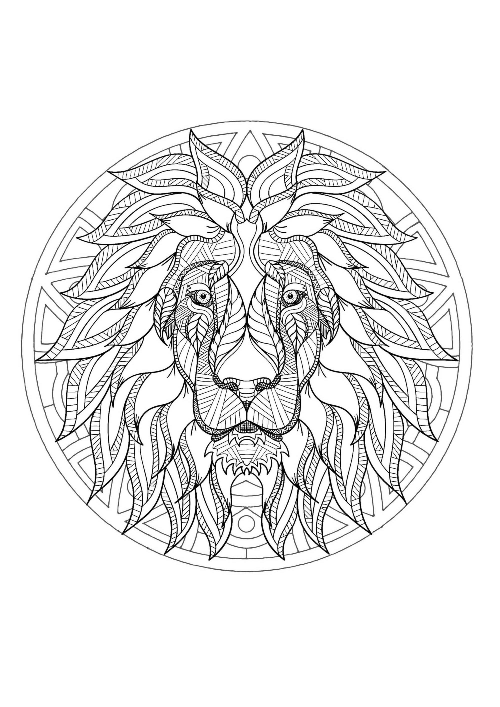 2000x2828 Mandala Lion Head 3 Mandalas
