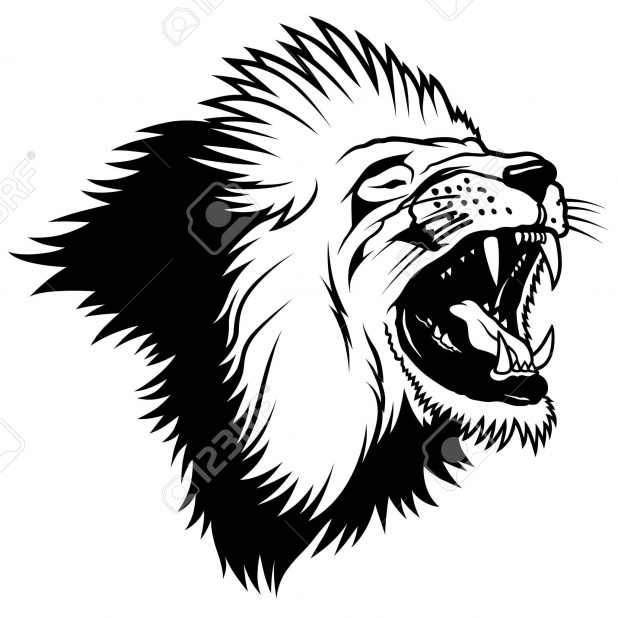 618x618 Adult Lion Drawing Outline Outline Of Lion Head Drawing. Lion