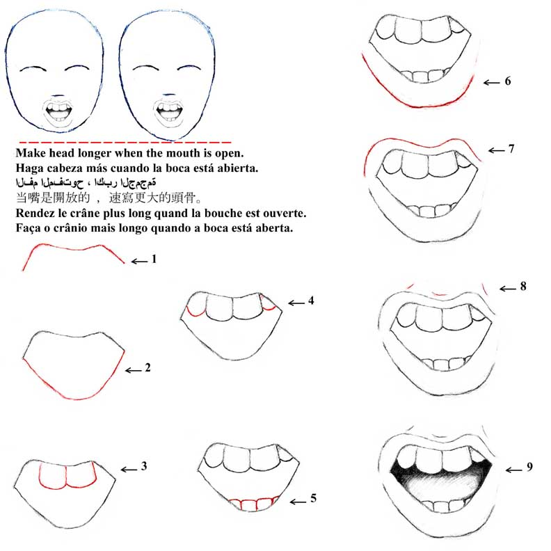 792x792 Index Of Cartoon Steps Jepgportraitslessons For Drawing