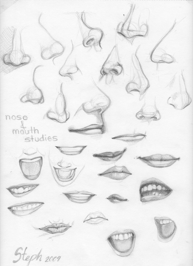 800x1101 Nose and Mouth studies by tigre lys on DeviantArt