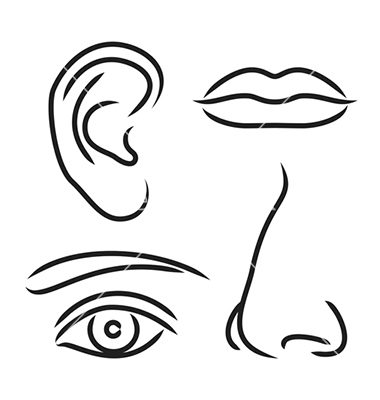 380x400 lips nose and eye clipart