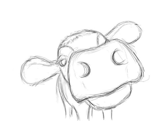 564x423 How to draw a cow nosemouth … Pinteres…