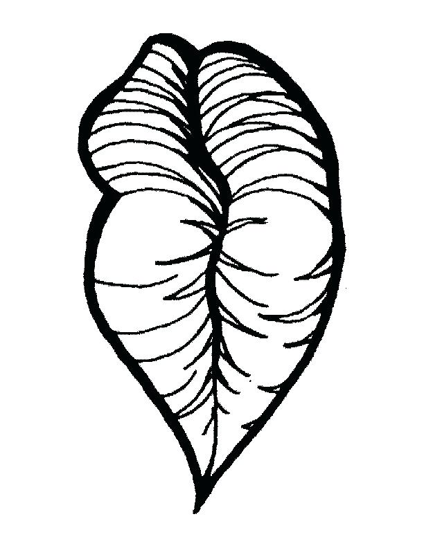 It's just an image of Persnickety Lips Outline Drawing